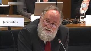 Die Machtverschiebung durch das Internet - Prof. Dr. Peter Kruse 05.07.2010 - Bananenrepublik