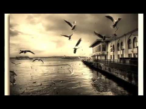 Erkin Koray - Öyle Bir Gecer Zaman Ki