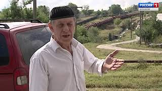 З телекамерою по РИ 16/09/19 с. п. Борсуки безхазяйне автор Аза Картаева