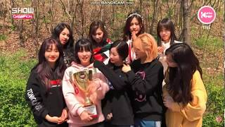"""Download Lagu [ENG SUB] TWICE """"WHAT IS LOVE"""" 6TH WIN Mp3"""