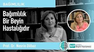 Bağımlılık Bir Beyin Hastalığıdır - Prof. Dr. Nesrin Dilbaz