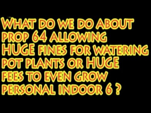 2016 AUMA / Prop 64 Debate Sacramento: WHAT ABOUT PERMITS & FINES ON PERSONAL GROWING?