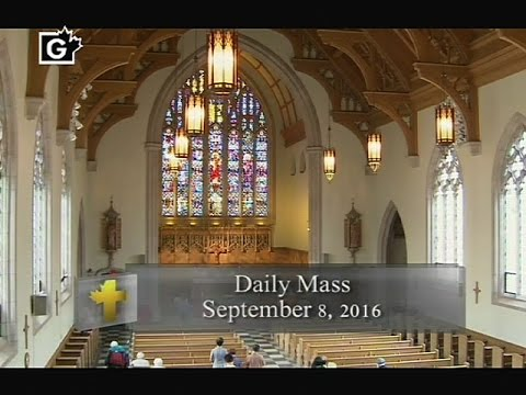 Daily Mass, Thursday 8 September 2016