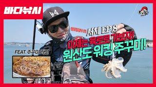 [4K] 서치 EP.8 쭈꾸미 시즌! 원산도 워킹 주꾸…