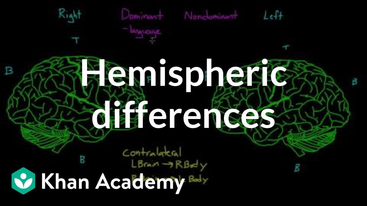 hemispheric dominance Personality, hemispheric dominance, and cognitive style abstract: a study of medical students and undergraduates shows those judged as left- or.
