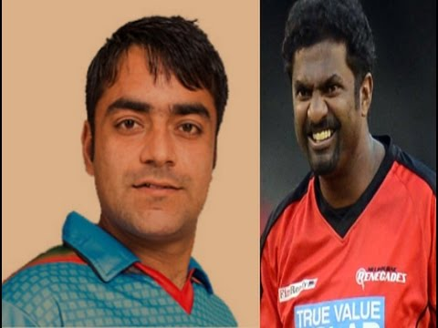 Vivo IPL 2017|  Rashid Khan | is special different Bowler |  Muttiah Muralitharan