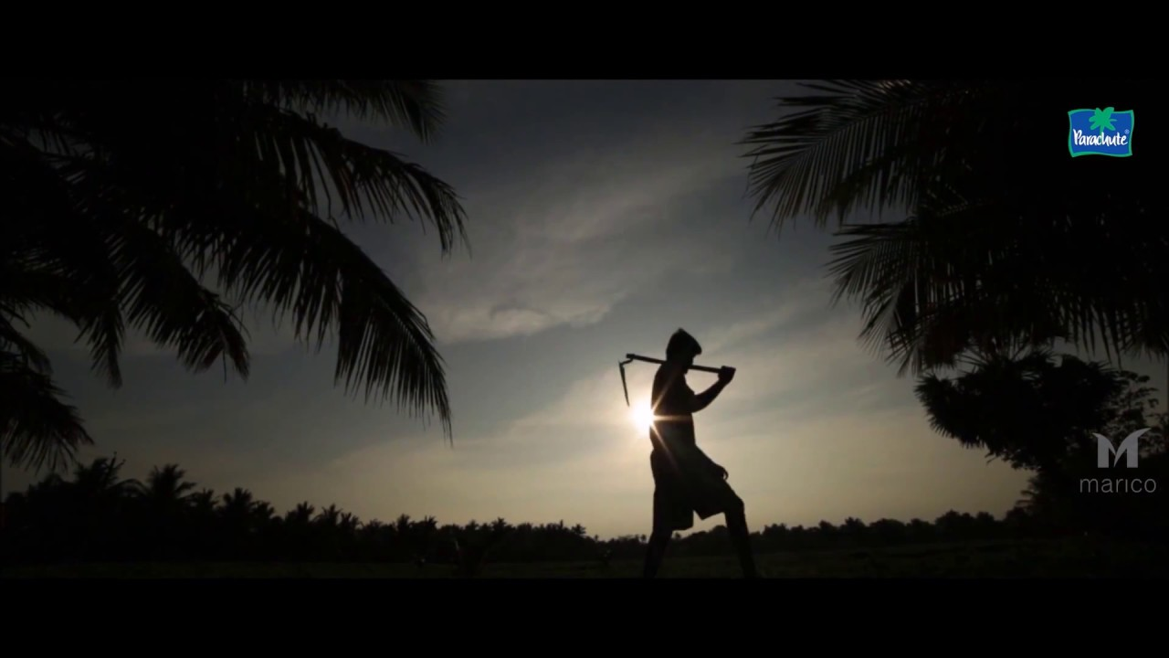 Anatomy of Coconut Tree (English) - YouTube