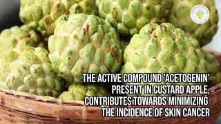 Custard Apple - Amazing Health Benefits- Part 8-prevents Skin Diseases