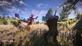 "The Witcher 3 Wild Hunt : Заказ:Лихо у Колодца ""Полуденница"" (На Смерть!)"