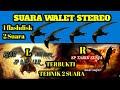 Sp Raja Liur Revisisp Tarik Senja R Versi Stereo Suara Walet Terbaik Andi Sufar  Mp3 - Mp4 Download