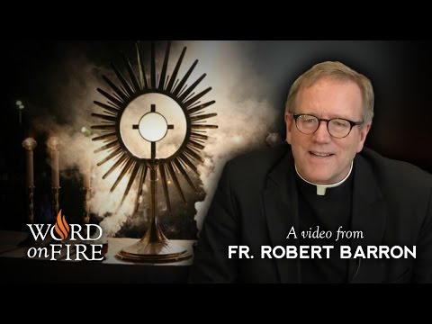 Bishop Barron comments on Eucharistic Adoration