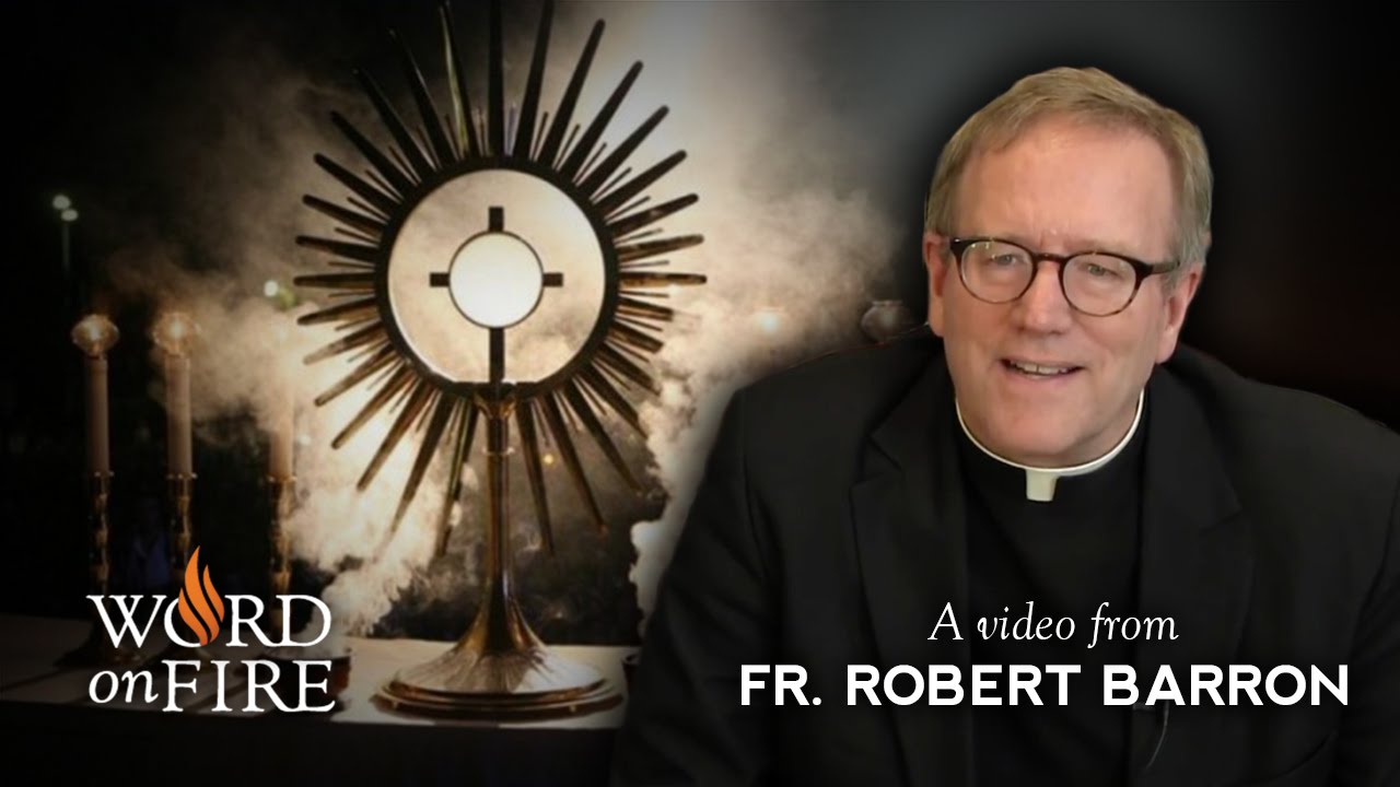 Bishop Barron comments on Eucharistic Adoration