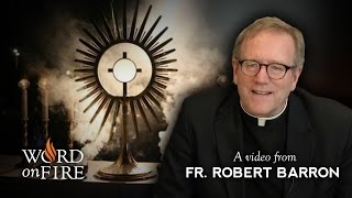 Fr. Barron comments on Eucharistic Adoration