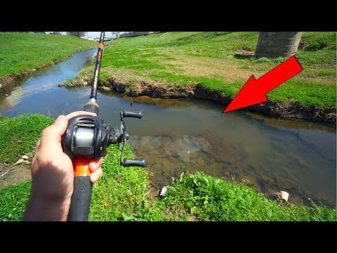 Fishing TINY Creek For Spawning Bass!!!