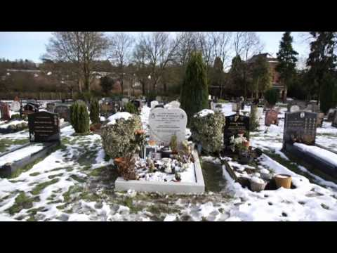 Billy Fury - 30th Anniversary Tribute - Halfway To Paradise Part1