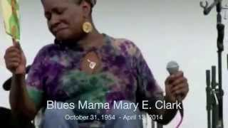 Mary Clark - Champaign Underground Pogo Studio Recordings by Mark Rubel