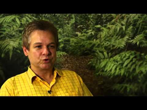 CIFOR's Sven Wunder on PEN studies