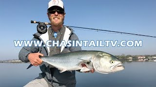 Back Bay Fishing for Striped Bass & Bluefish | Chasin' Tail TV