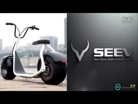 Harley /Citycoco Electric Scooter---www.sdnumberone.en.alibaba.com