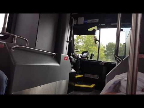 Funny Disney World Bus Driver During Hurricane
