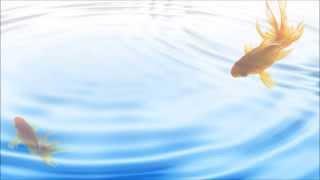 """和""""恋に落ちて""""一樣受錄在首單的""""金魚すくい""""(撈金魚) 歌詞是以金魚的角..."""