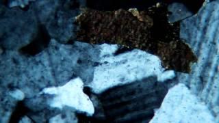 Biotite Exhibiting Pleochroism
