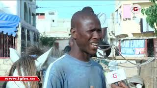 Exclusif-Pikine : Rencontre avec l'homme qui parle aux chevaux