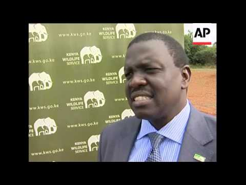 Kenya Wildlife Service calls for ban on world ivory trade