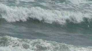 国府の浜 2 2010.4.11