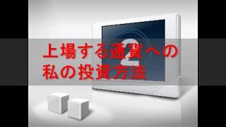 上場する通貨への私の投資方法 吉羽美華 検索動画 13