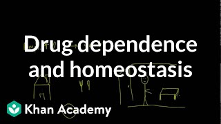 Drug dependence and homeostasis | Processing the Environment | MCAT | Khan Academy