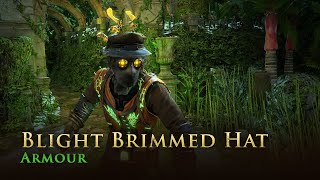 Path of Exile: Blight Brimmed Hat