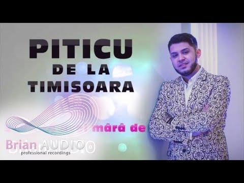 Piticu de la Timisoara - Sasti te avel mara de (Ascultare 2016)
