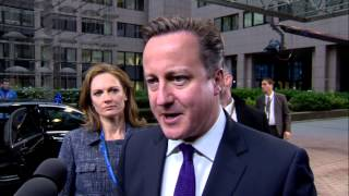 European Council - UK Prime Minister David Cameron