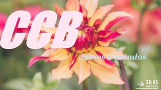 CCB. Hinos Velhos 332, 384, 446, 372, 103, 154, 92, 128, 222, 52, 189,138.