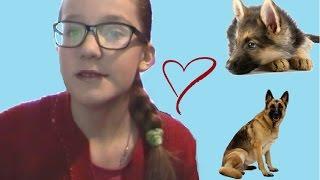 видео СОБАКА В ДОМЕ: немецкая овчарка | ч.10 | lenny lorenz