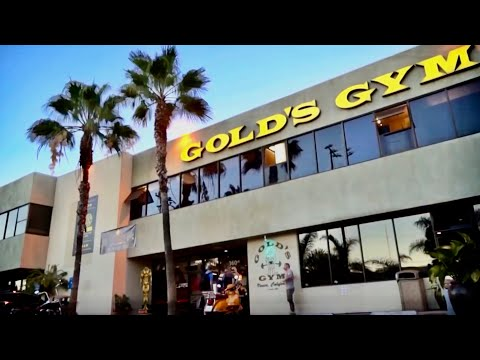 GOLD'S VENICE - THE GREATEST GYM IN THE WORLD