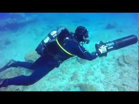 Thumbnail for What to Look For in Scuba Diving Courses