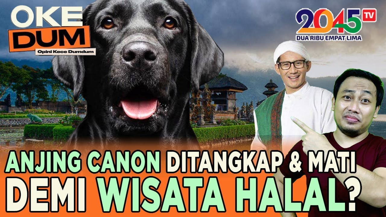 Download Yusuf Muhammad: SANDIAGA UNO, CAPRES WISATA HALAL ?? (Oke Dum #102)