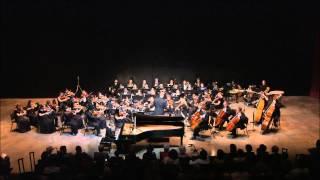 Edvard Grieg Piano Concerto I. Allegro molto moderato