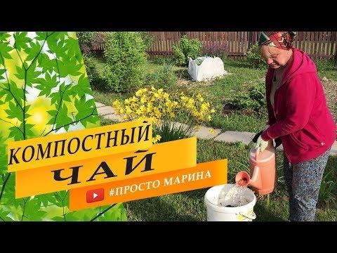 Супер чай для сада и огорода. Результат…