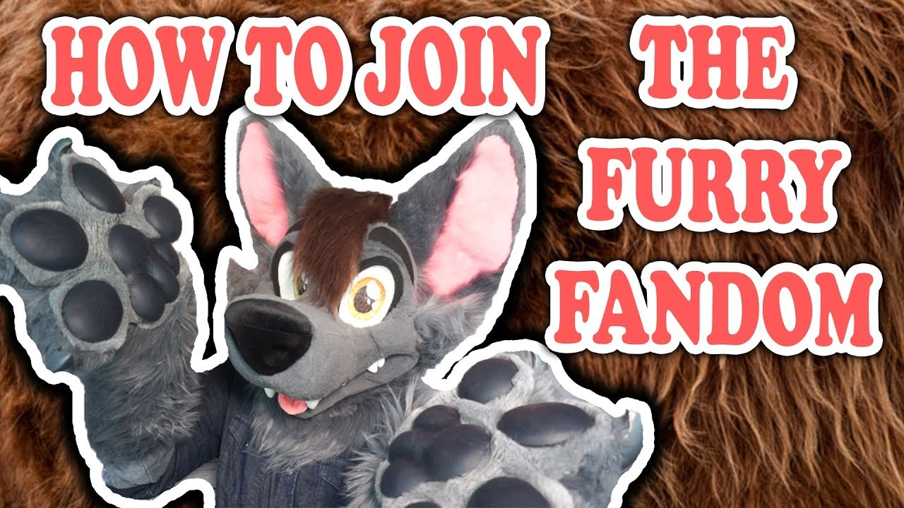 How to Present Furry Fandom to the Media How to Present Furry Fandom to the Media new photo