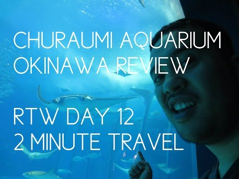 CHURAUMI AQUARIUM OKINAWA GUIDE - RTW Day 12 - 2 Minute Travel