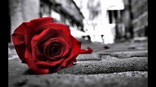 Heart touching Sad Song | Soniye..... Hiriye....... | Lyrics