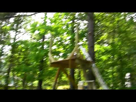 Smallest Tree House In The World worlds smallest tree house - youtube