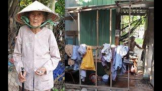 Bà cụ 83 tuổi sống trong căn nhà hoang, làm bạn với muỗi và chuột