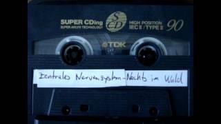 Zentrales Nervensystem - Nachts im Wald