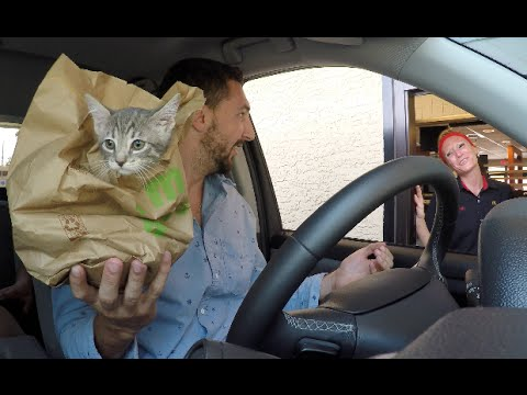 drive-thru-pranks!!