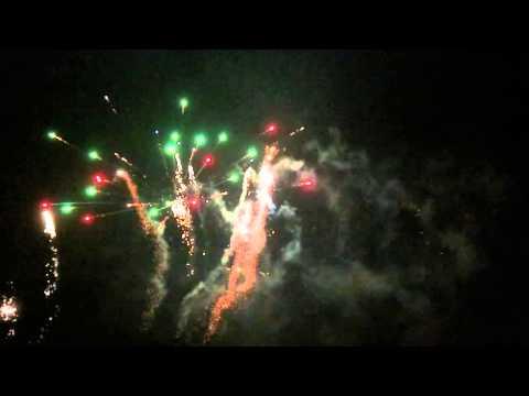 Chelsea Arts Club Fireworks 2014