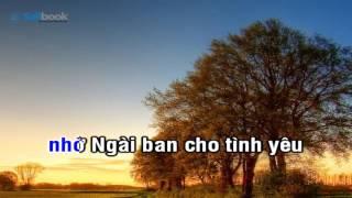 [Karaoke TVCHH] 374- ĐẸP Ý NGÀI - Salibook